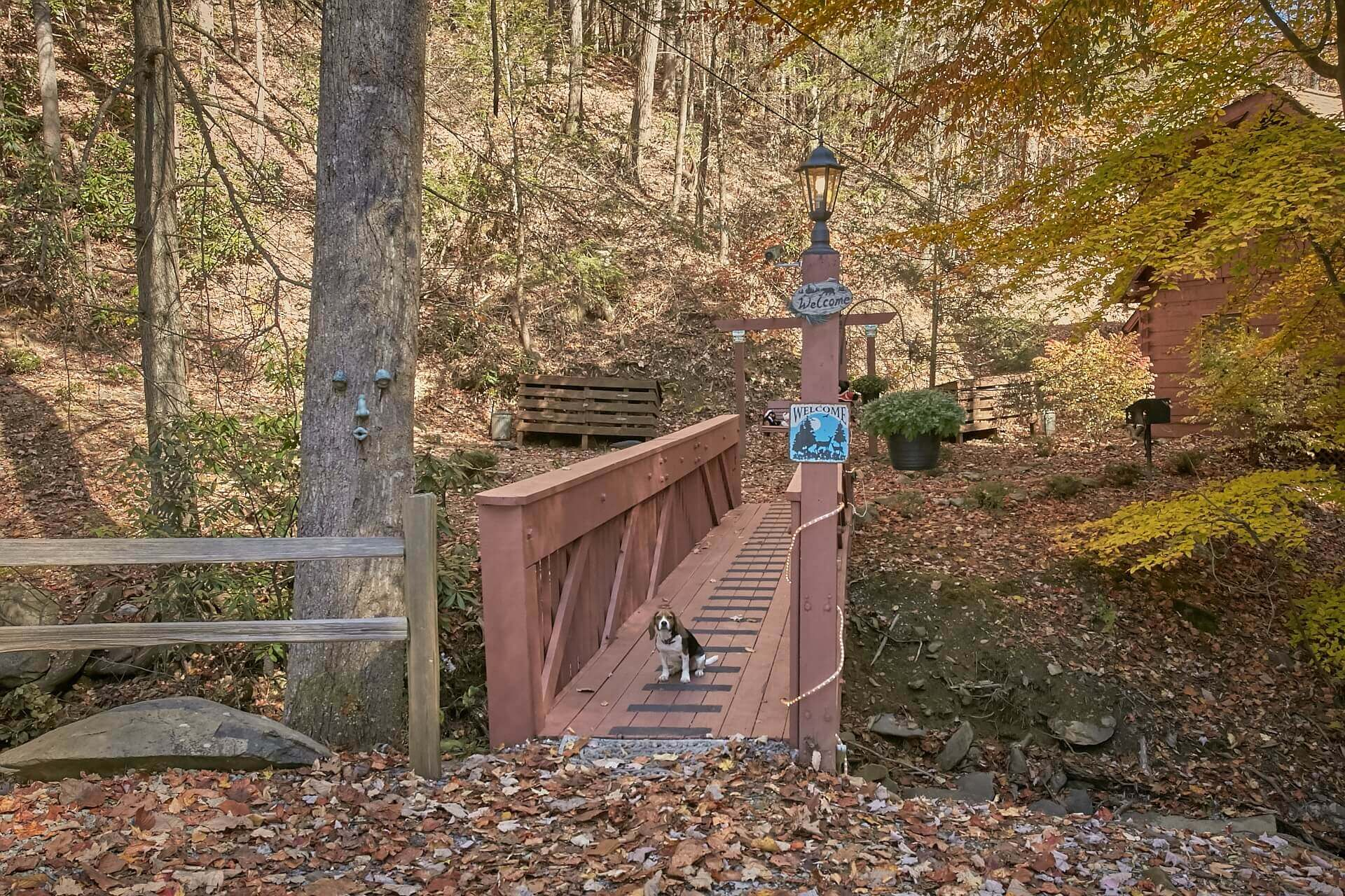 sale a hills with rent gatlinburg for rentals chapel cabins in otside hemlock wedding resort