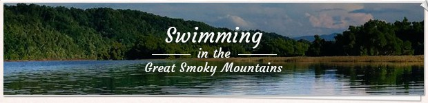 Swimming in the Great Smoky Mountains