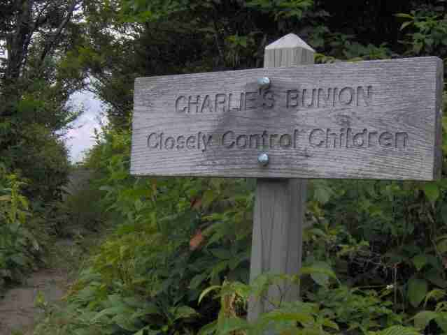 Charlies Bunion Hiker