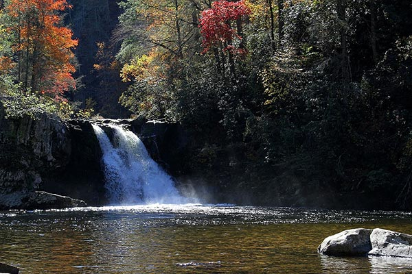 Abrams Falls Swimming Hole