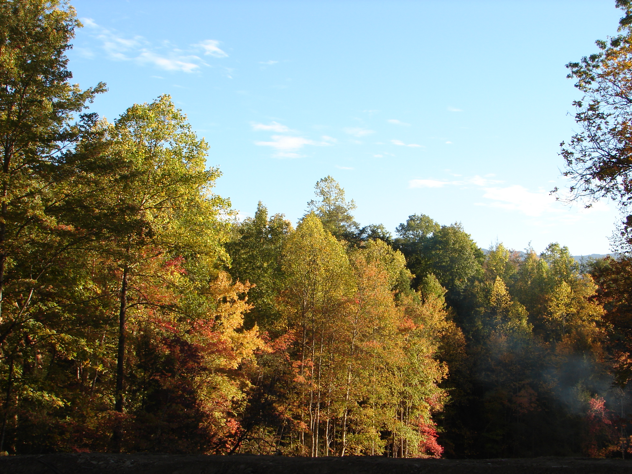 Gatlinburg Cabin Rentals and Lodges - Fall colors