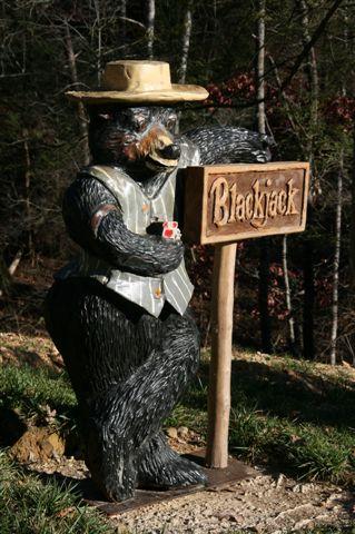 blackjack - Luxury Cabin - Gatlinburg, TN
