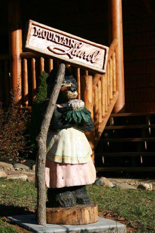 mountain laurel - Gatlinburg Cabin Rentals