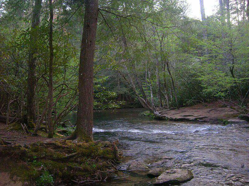 Abrams_Creek_Near_Trailhead
