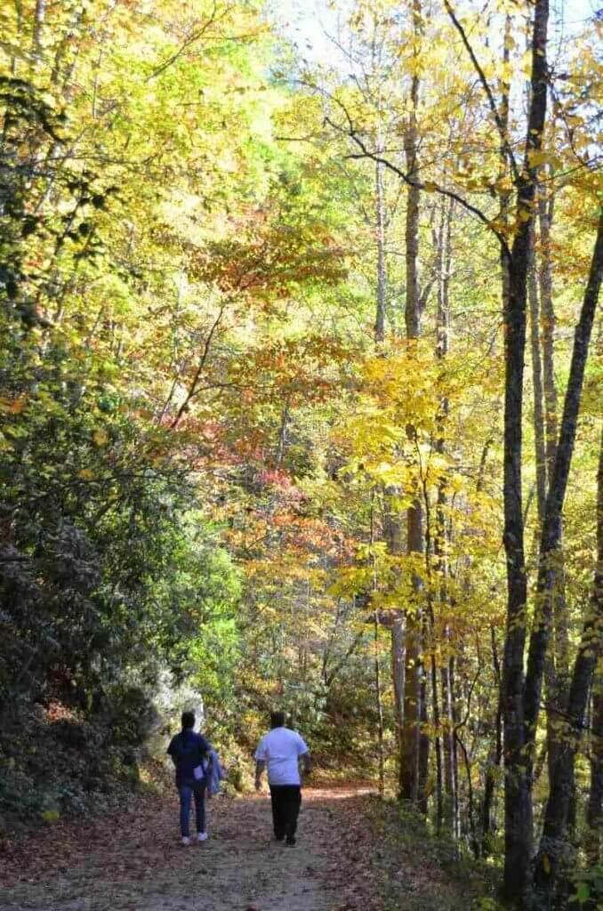 Deep-Creek-Loop-Trail