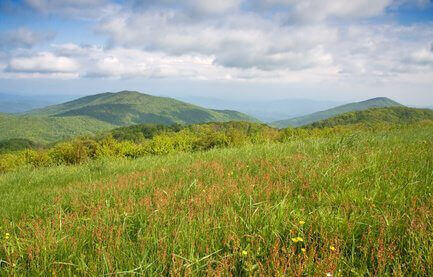 View of Appalachian Mountains from a meadow on Max Patch bald.