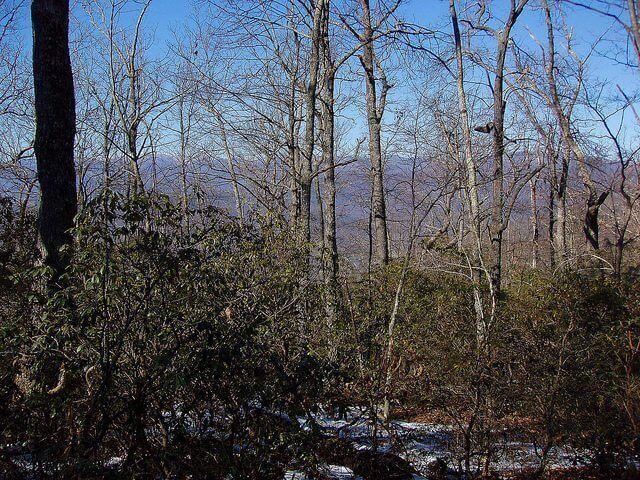 black-mountain-trail