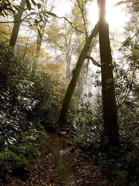gatlinburg-hiking-alum-cave-trail