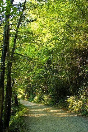 indian-creek-trail