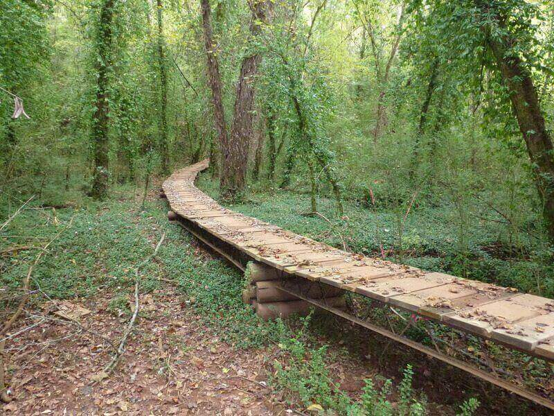 knoxville-south-loop-trail