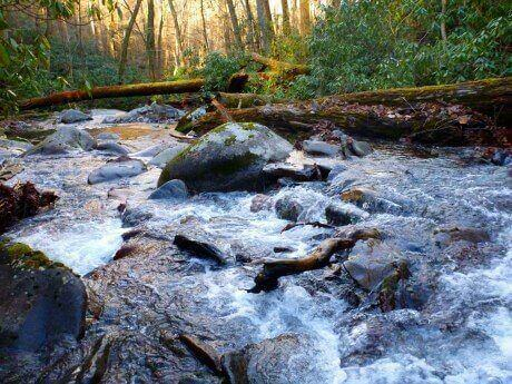porter-creek-trail-downstream-horseshoe-junction