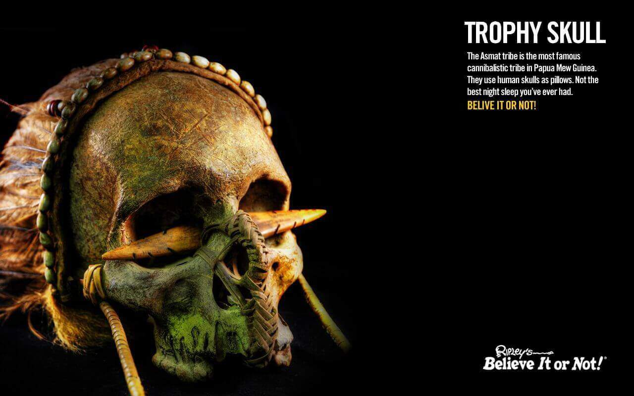 ripleys-cannibal-skull