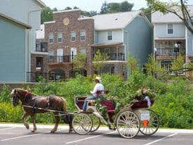 shopping-covered-bridge-glades-carriage-ride