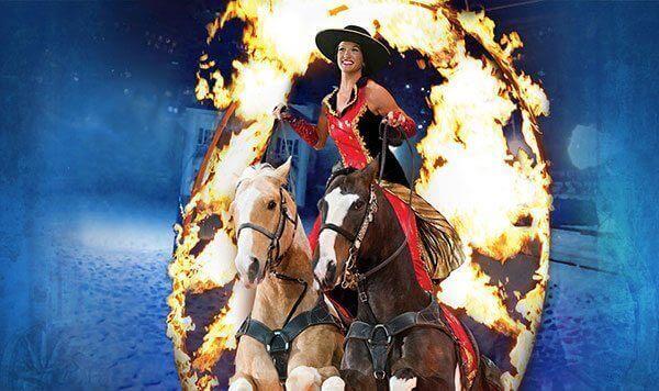 show-roman-rider-dixie-stampede